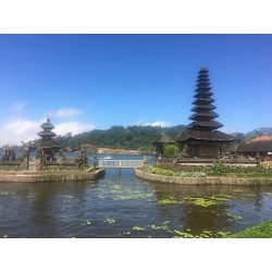 Bali fun